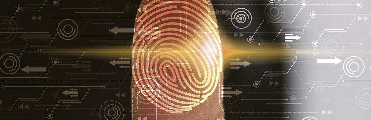 Digitalisierung und IT – Vertragsgestaltung, Daten und Haftung
